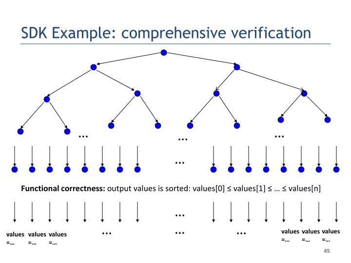 SDK Example: comprehensive verification