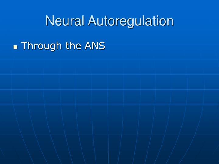 Neural Autoregulation