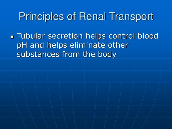 Principles of Renal Transport