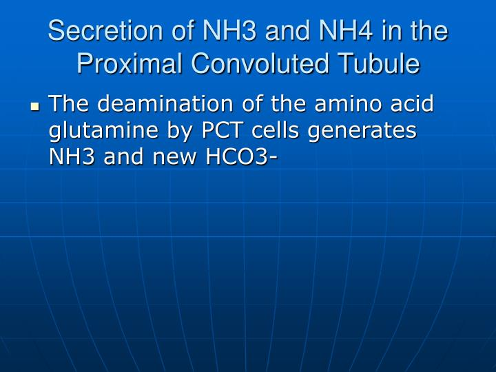 Secretion of NH3 and NH4 in the Proximal Convoluted Tubule