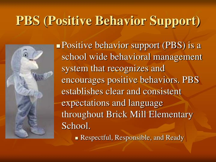 PBS (Positive Behavior Support)