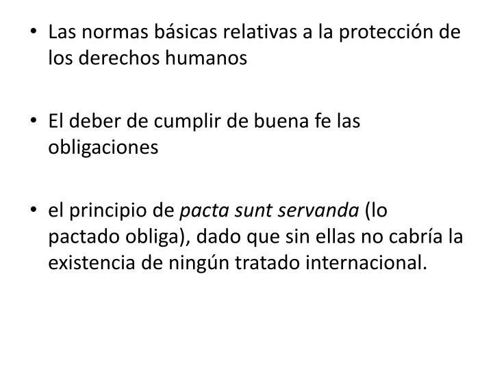 Las normas básicas relativas a la protección de los derechos humanos