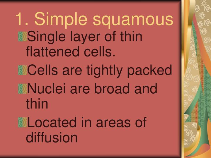 1. Simple squamous