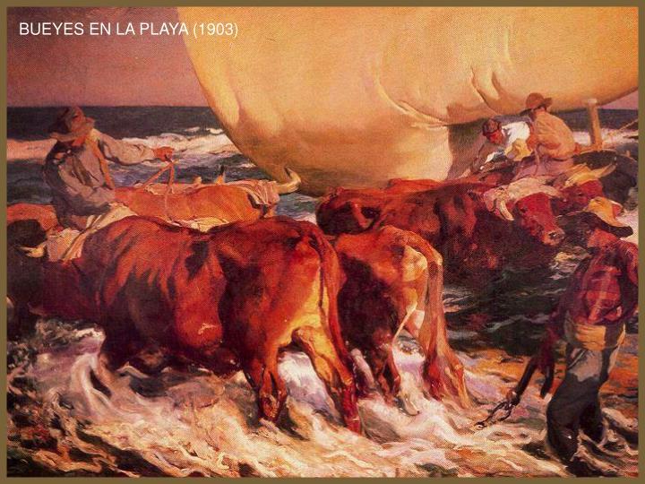 BUEYES EN LA PLAYA (1903)