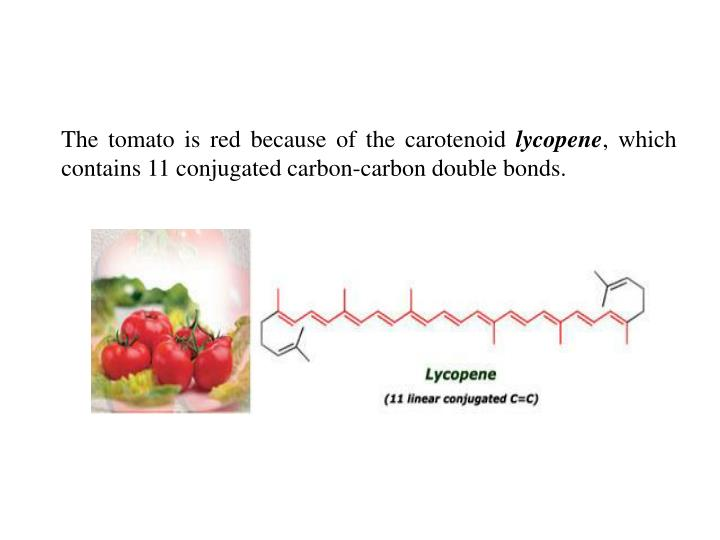 The tomato is red because of the carotenoid