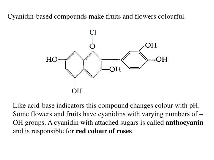 Cyanidin-based compounds make fruits and flowers colourful.