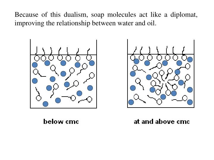 Because of this dualism, soap molecules act like a diplomat, improving the relationship between water and oil.