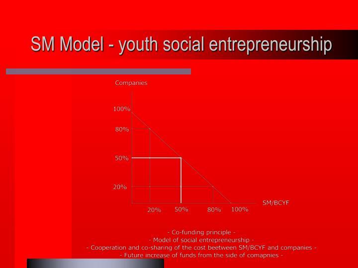 SM Model - youth social entrepreneurship