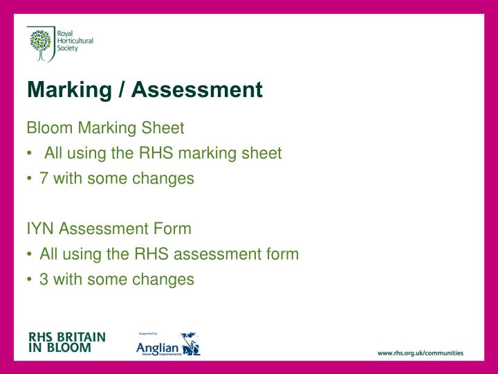 Marking / Assessment