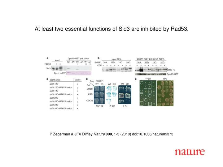 At least two essential functions of Sld3 are inhibited by Rad53.