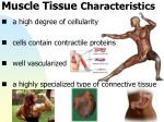 muscle tissue characteristics