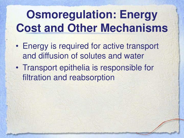 Osmoregulation: Energy Cost and Other Mechanisms