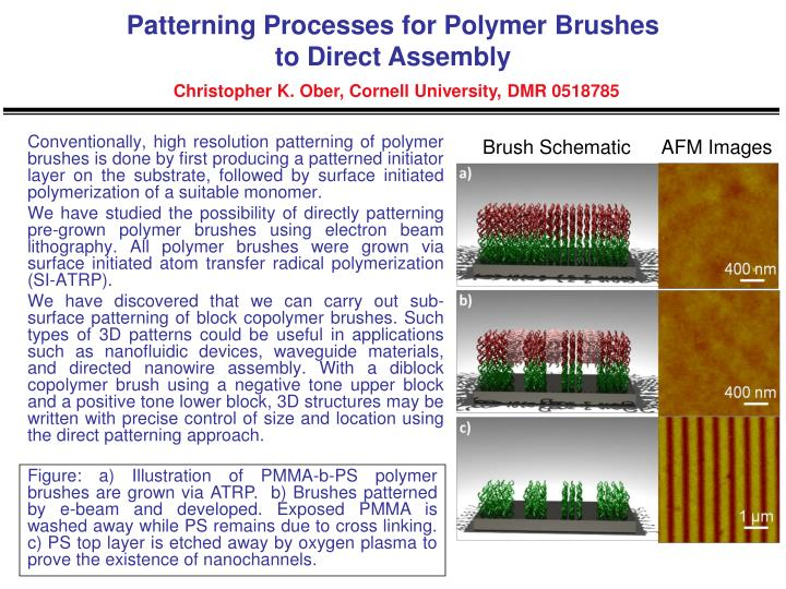 Patterning Processes for Polymer Brushes