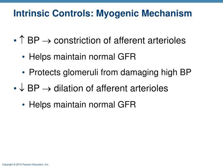 Intrinsic Controls: Myogenic Mechanism