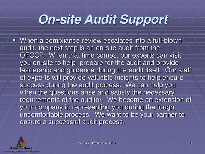 On-site Audit Support