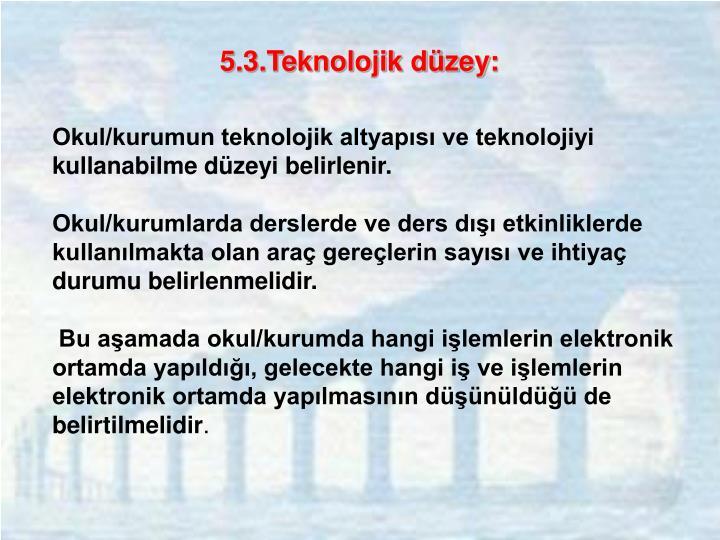 5.3.Teknolojik düzey: