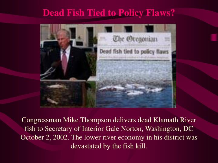 Dead Fish Tied to Policy Flaws?