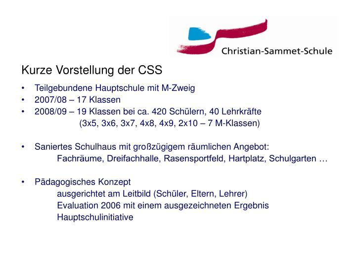 Kurze Vorstellung der CSS