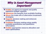 why is asset management important