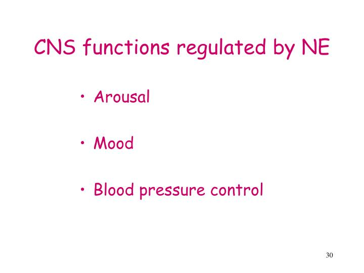 CNS functions regulated by NE