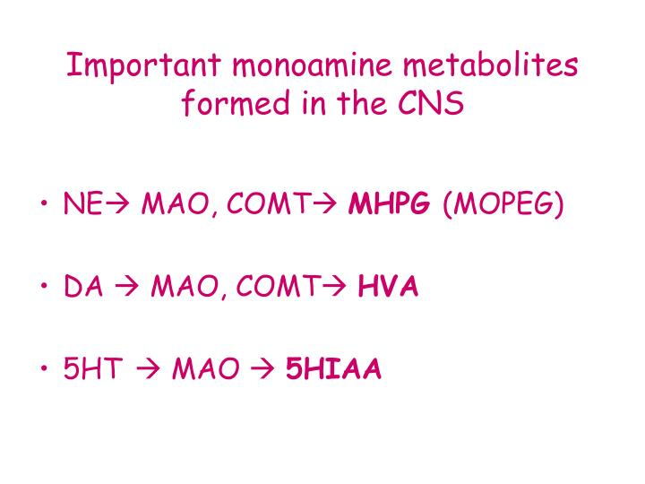 Important monoamine metabolites formed in the CNS