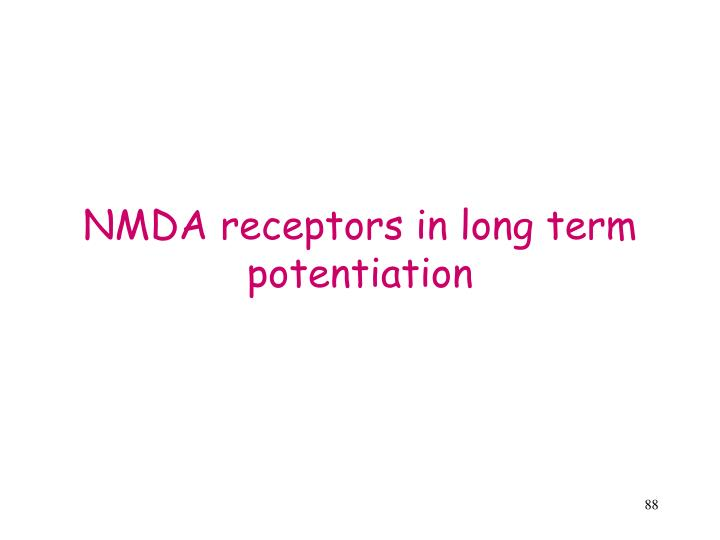 NMDA receptors in long term potentiation