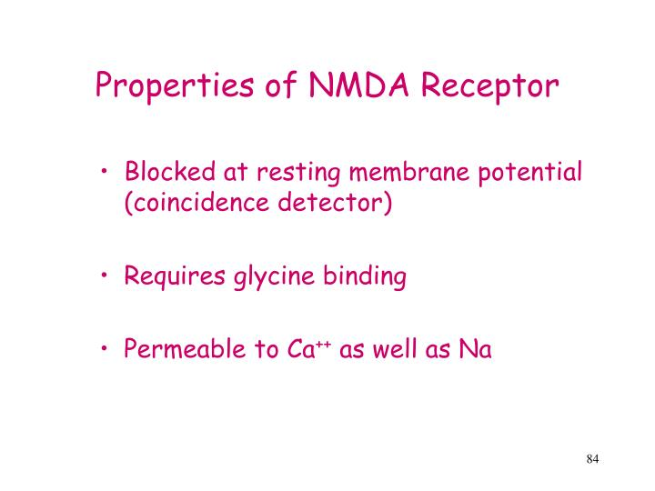 Properties of NMDA Receptor