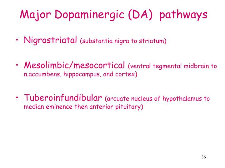 Major Dopaminergic (DA)  pathways