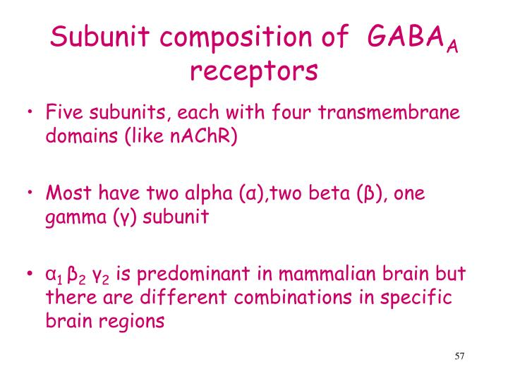 Subunit composition of  GABA