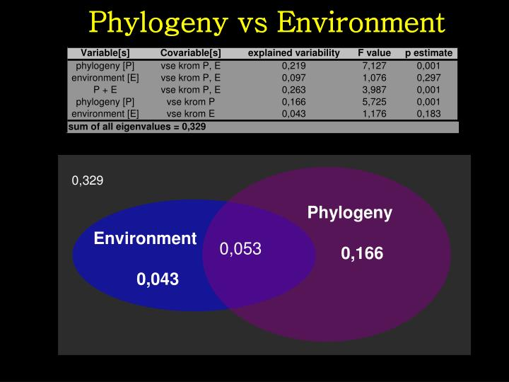 Phylogeny vs Environment