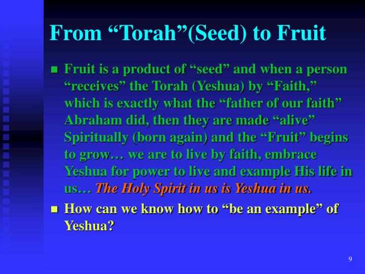 "From ""Torah""(Seed) to Fruit"