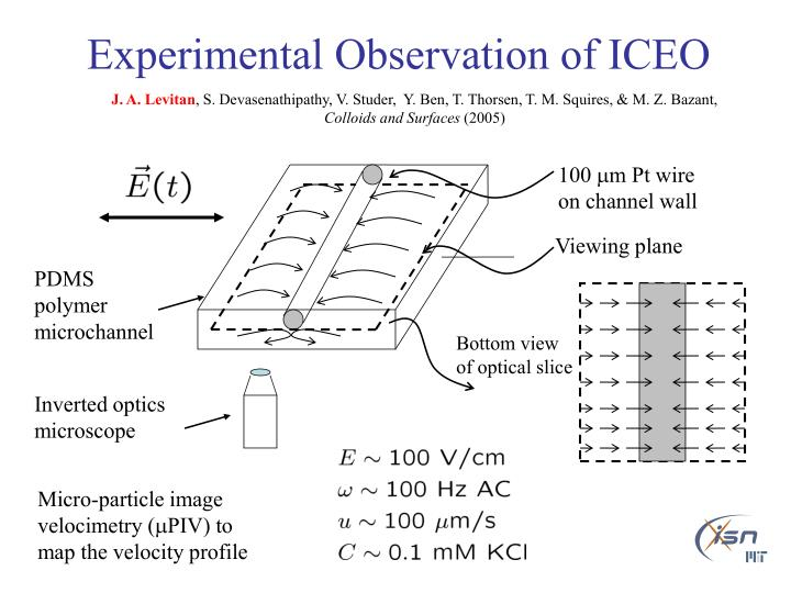 Experimental Observation of ICEO