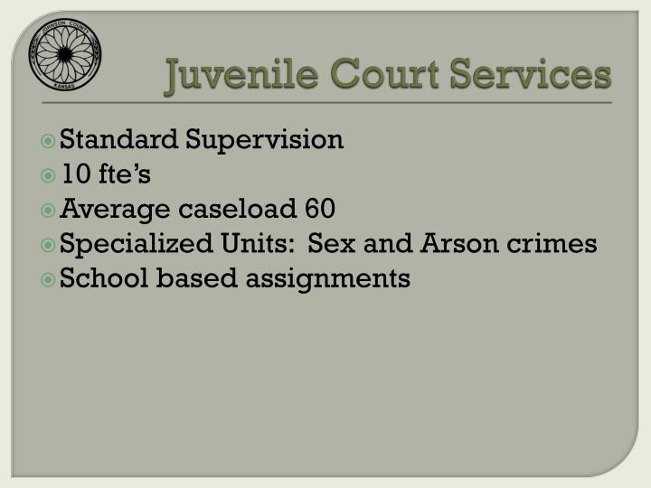 Juvenile Court Services