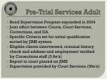 pre trial services adult