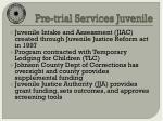 pre trial services juvenile