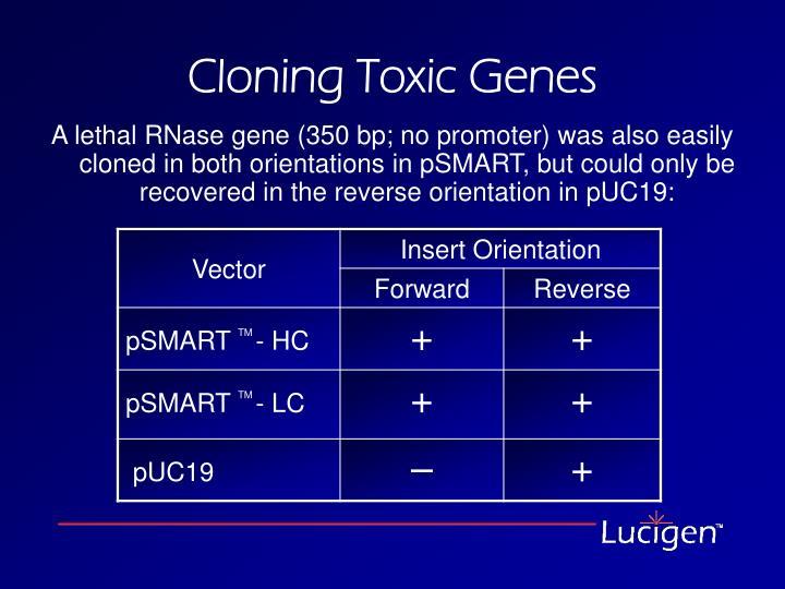 Cloning Toxic Genes