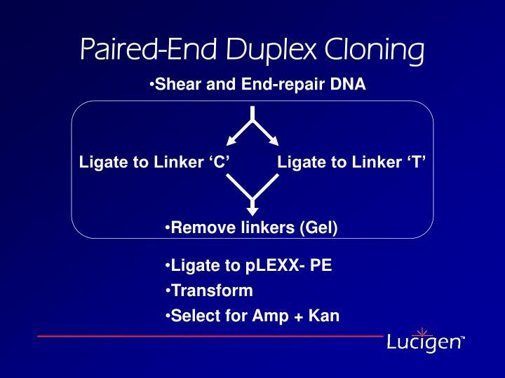 Ligate to Linker 'C'