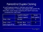 paired end duplex cloning2