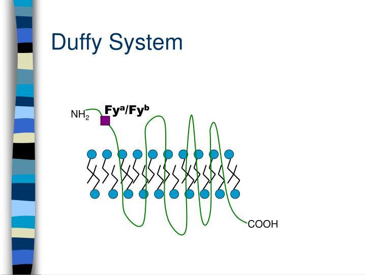 Duffy System
