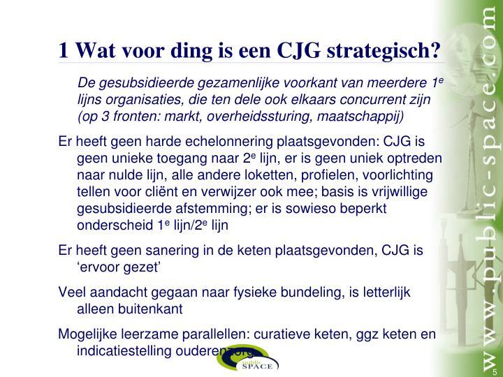 1 Wat voor ding is een CJG strategisch?
