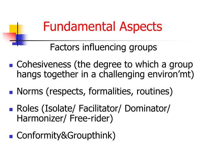 Factors influencing groups