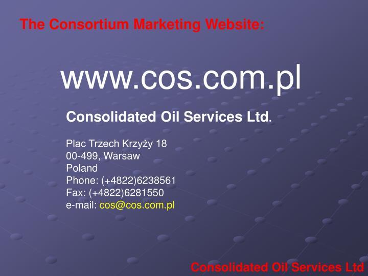 The Consortium Marketing Website: