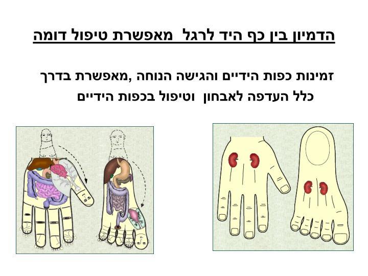 הדמיון בין כף היד לרגל  מאפשרת טיפול דומה