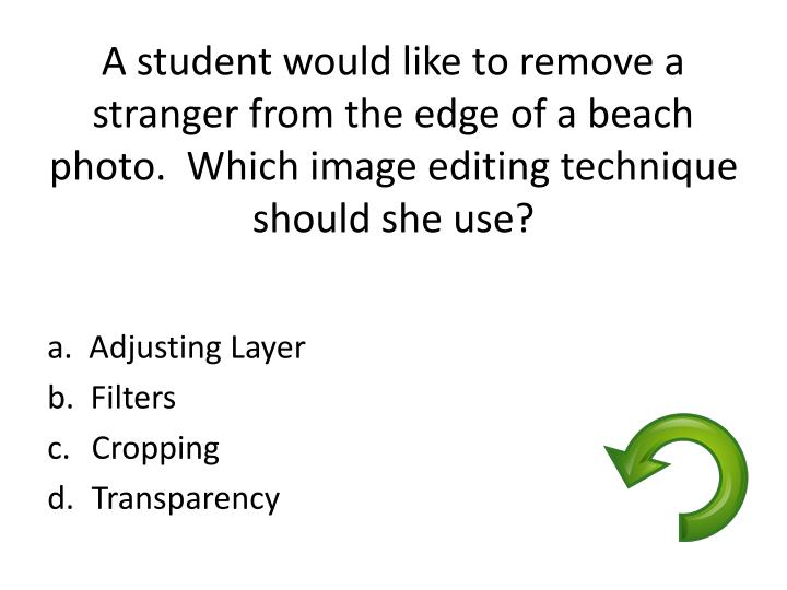 A student would like to remove a stranger from the edge of a beach photo.  Which image editing technique should she use?