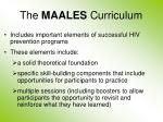 the maales curriculum