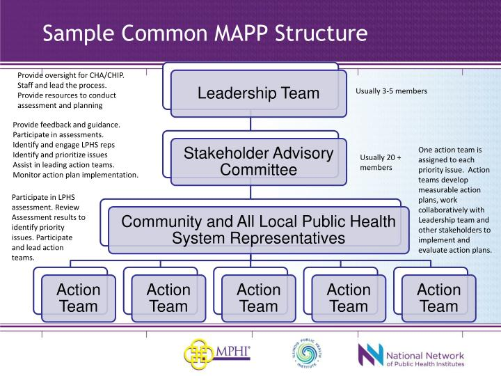 Sample Common MAPP Structure