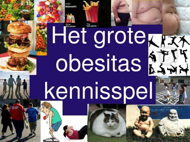 Het grote obesitas kennisspel