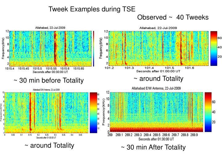 Tweek Examples during TSE