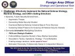 foreign area officer strategic and operational role