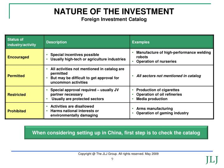 NATURE OF THE INVESTMENT